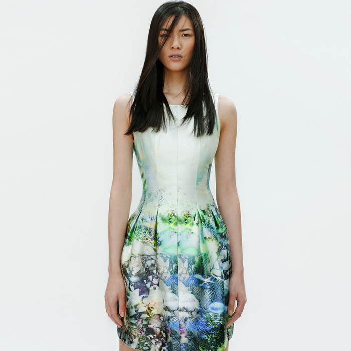 Zara - Lookbook 2012 - Digital Print Dress