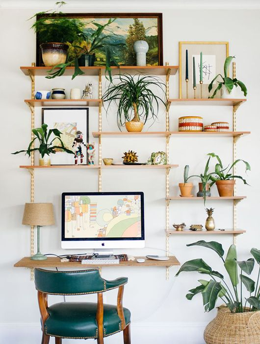 apartment-plants-design-ideas1