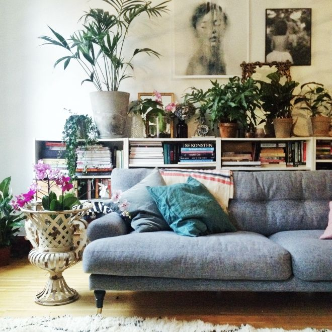 Living Spaces Why I Said Goodbye To Flowers And Hello Potted Plants